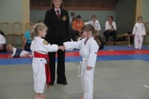 20110622_judocup2011_startseite02