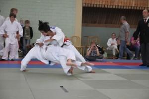 20110622_judocup2011_startseite04