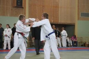 20110622_judocup2011_startseite05