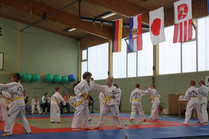 Taekwondo Bild 1a