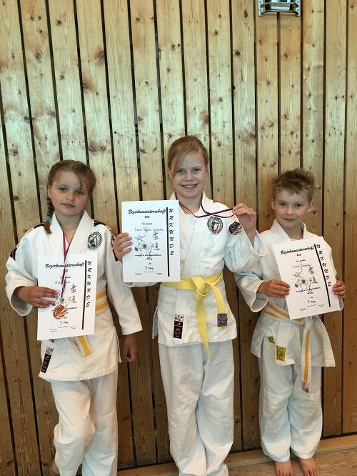 Judoka für Landesmeisterschaft qualifiziert