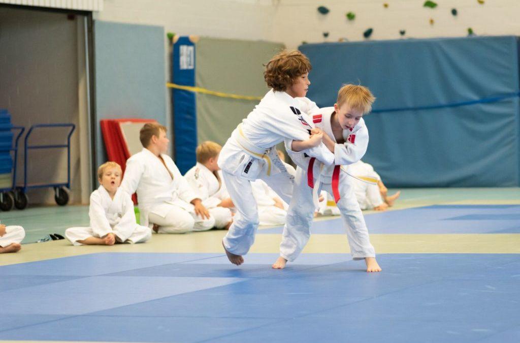 Safari und Pentathlon beim Judo